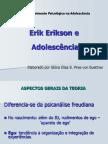 Erikson revisão