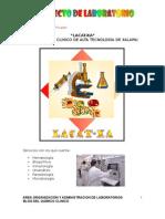 Proyecto Para un Laboratorio Clínico