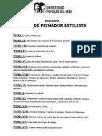Programa Curso Peinador Estilista