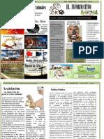 nuevo periodico (1)
