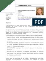 Curriculum Vitae Corregido