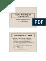CapBudgetCapStructure PM
