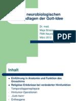 Gehirn und Gott-Idee, Neurologie