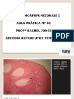 CMF I -Aula Pratica n 2-SRFeminino