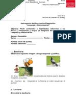 Prueba Lenguajeycomunicacin Diagnostico 110712185223 Phpapp02
