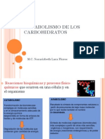 Metabolismo de Carbohidratos Ene2012