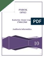 PMBOK JR
