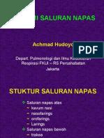 AnatomiParu05