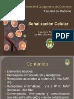 Señalización Celular (1)
