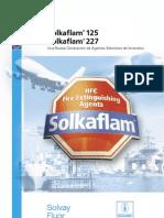 14093 Psp Solkaflam Es