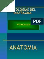 Patologias Del Diafragma Neumologia
