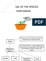Plants Survival