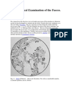Microscop Examination