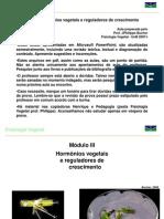 Aula_1.1-_HORMONIOS VEGETAIS