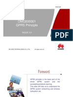 Omq000001 Gprs Principle Issue2.0