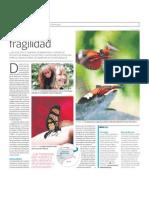 En Iquitos, Perú disfruta del Centro de Conservación de Mariposas