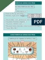 Características Gerais dos Vírus