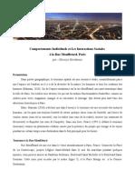 Comportements Individuels et Les Interactions Sociales  à la Rue Mouffetard Paris