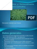 Farmacocinetica y mia de La Marihuana (Cannabis