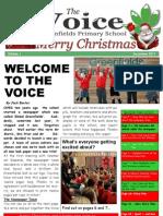 Voice1 for PDF