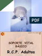 2-RCP-Basica-2006