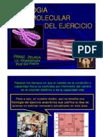 Fisiologia Molecular Del Ejercicio Presentacion