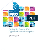 puttingbigdatatowork_032011