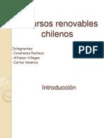 Recursos Renovables de Chile
