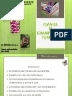 Plantes Et Chpg. Toxiques
