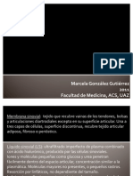 estudiodellquidosinovial1-111025182609-phpapp01