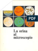 La Orina Al Microscopio