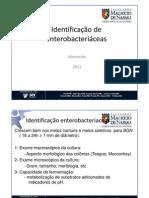 11. Enterobacteriacéas - Identificação