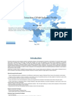 China Extraction of Salt Industry Profile Isic1422