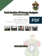 Field Studies of Energy Budgets