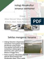 Manajemen & Tekno Intensif Udang Vaname