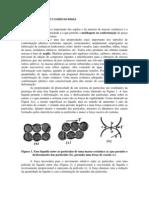Rel 3 - Limites de Plasticidade e Fluidez Da Argila