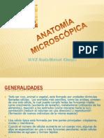 PresentaciónANATOMICROSCOPICA