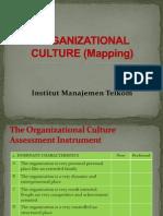 Organizational Culture (10)