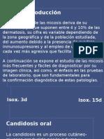 LeccionesenMicología mód1