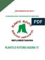 Teca - A Madeira Mais Valorizada Do Cerrado
