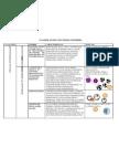 CLASIFICACION LEUCEMIAS LINFOIDES