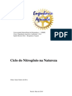 CICLO DO NITROGÊNIO