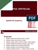 histologie-lp1