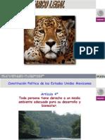 Presentación Marco legal CVAPS PFPA