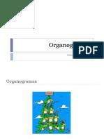 3ª aula - Organograma