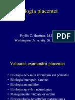 Patologia Placentei SC 06 Ppt Handout 2005