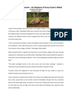 Death Announcement – An Elephant of Ivory Coast is Killed