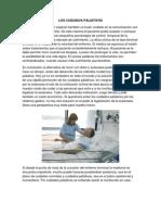 Los Cuidados Paliativos Bioetica