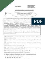 Guia Directiva Algebra