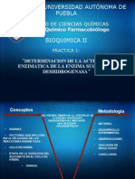 Succinato_deshidrogenasa